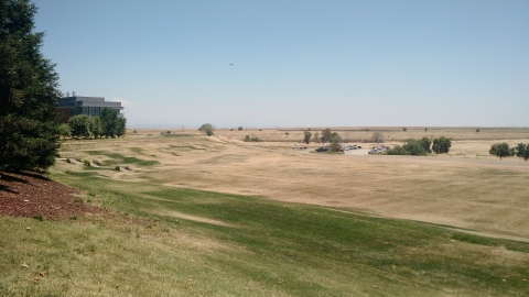 Image of The Bowl at UC Merced. The grass isn't as green due to extreme drought conditions.
